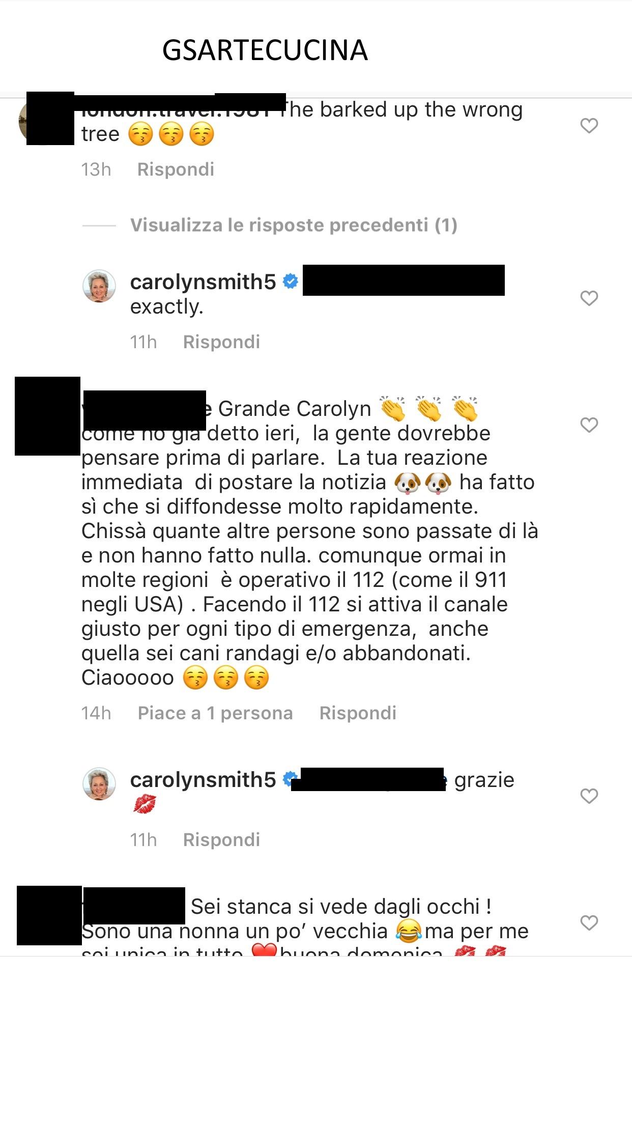 Le offese di Carolyn Smith al popolo del web