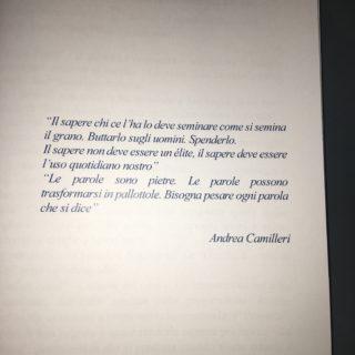 Montalbano - Riccardino - Andrea Camilleri